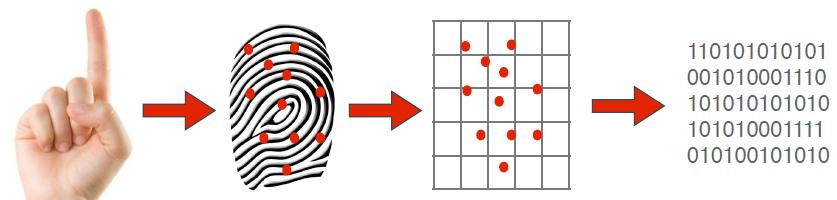 fingerprint-time-attendance-system